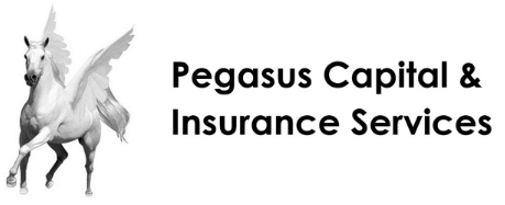 Pegasus Capital & Insurance Services logo